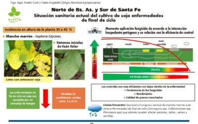1º Informe Fitosanitario Cultivo de Soja