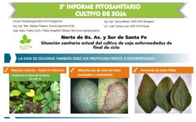 3º Informe Fitosanitario Cultivo de Soja